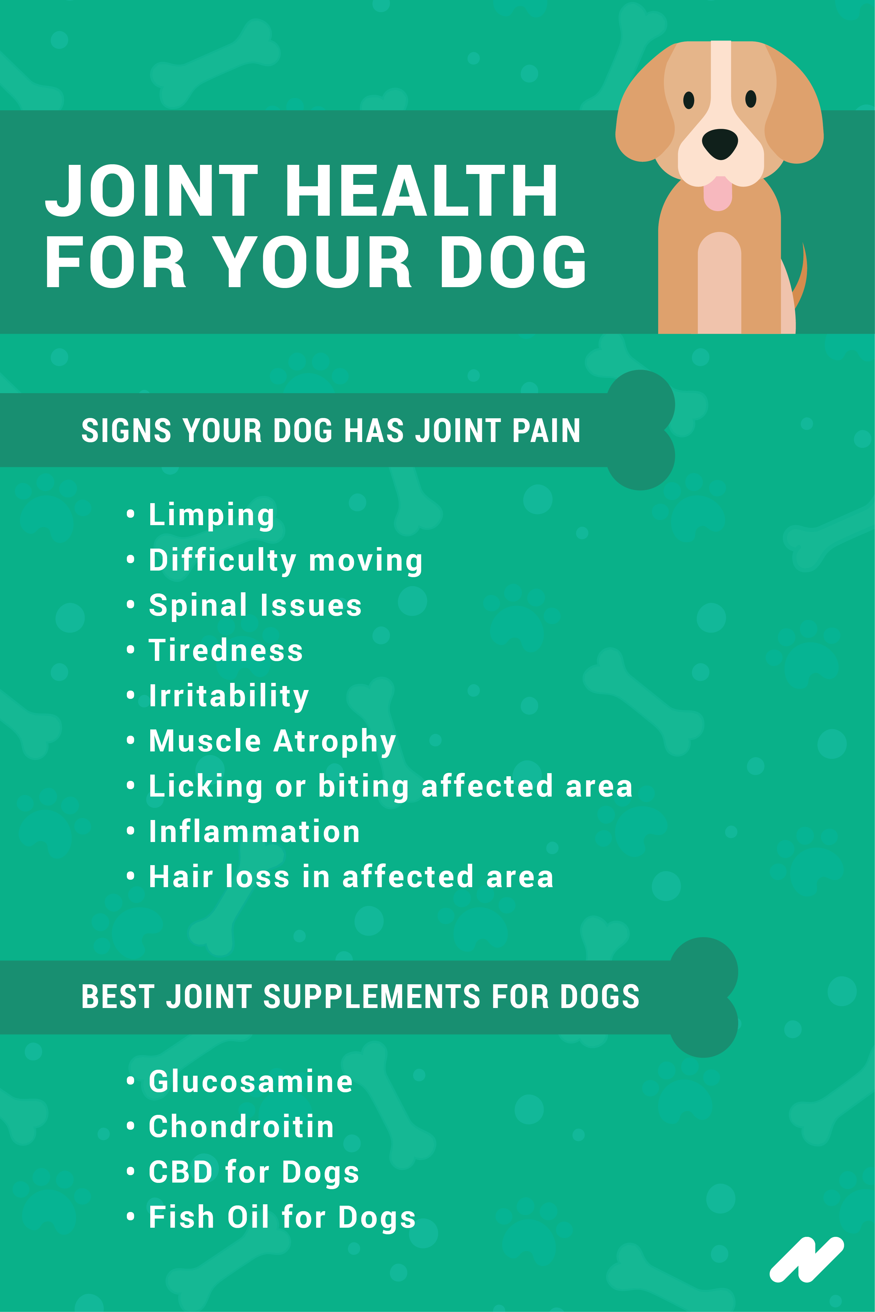 Joint Health for your Dog